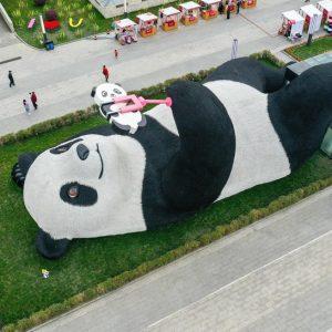 Estátua de panda tirando selfie encanta público no sudoeste da China